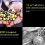 Apartat de disseny web de Tradició de Guardamar