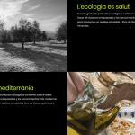 Apartat de disseny web de dieta mediterrànea de Guardamar